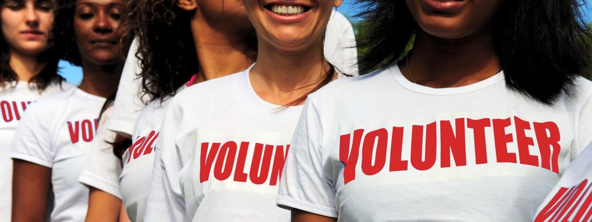 Mario's Volunteers